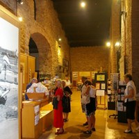 Spaziergang zwischen Salz und Geschichte