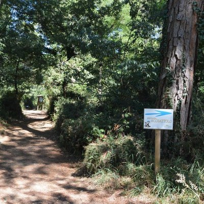 Geführte Besichtigungen im Naturpark