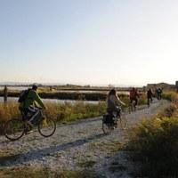 Mit dem Fahrrad in der Saline