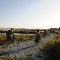 By bicycle in the saltpan
