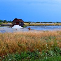 Guided tours of the Camillone saltpan in Italian