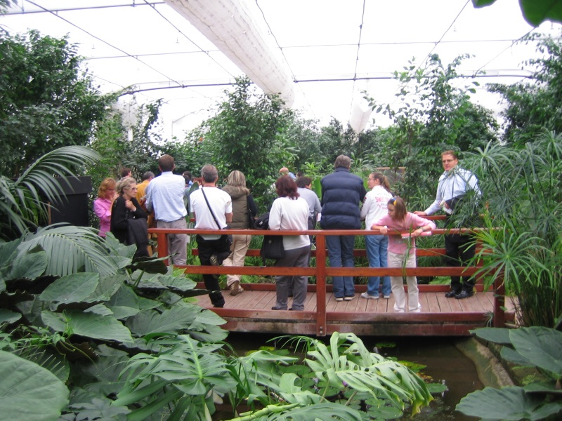 Guided tours of the Butterfly House