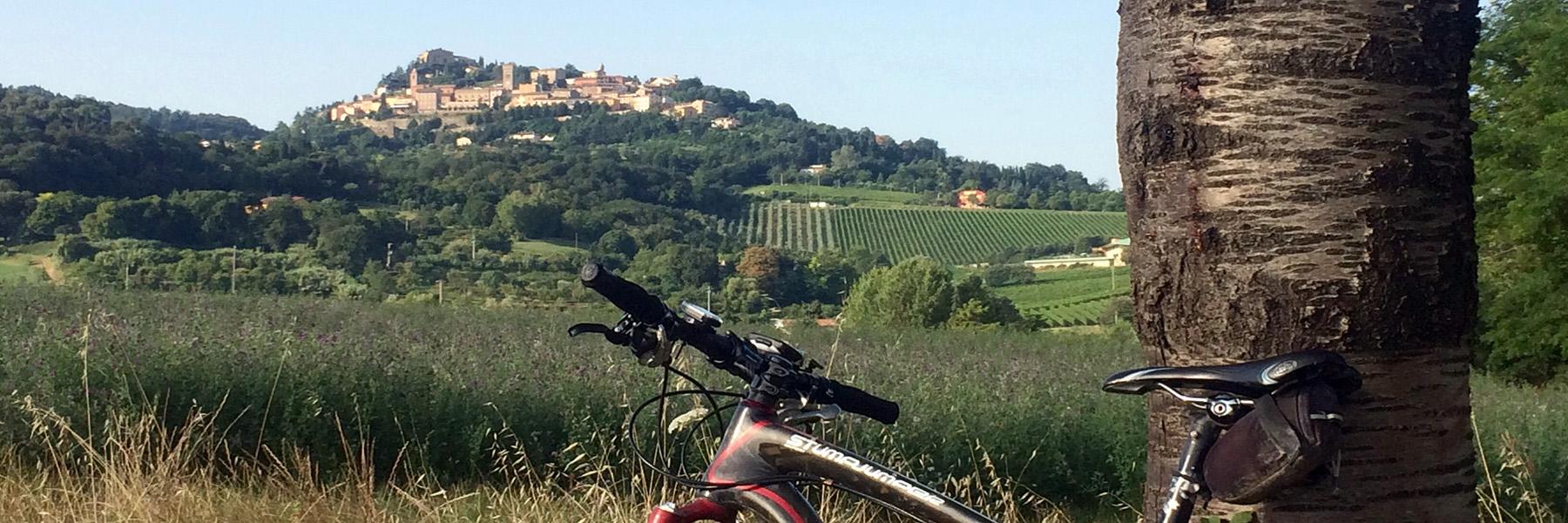 Tour d'un jour en vélo au San Bartolo Parc