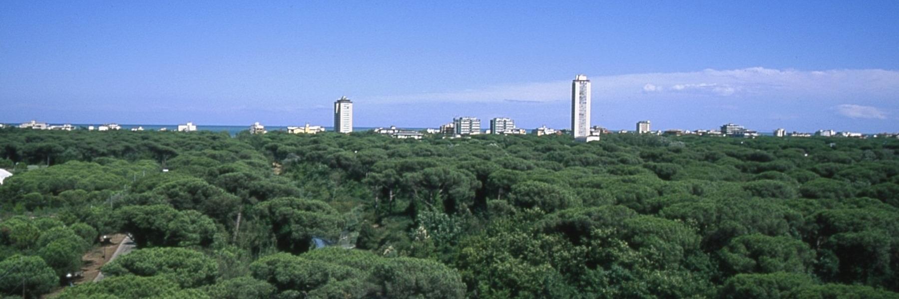 Vue panoramique de Cervia