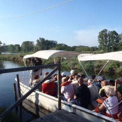 En saline en bateau, itinéraire naturaliste