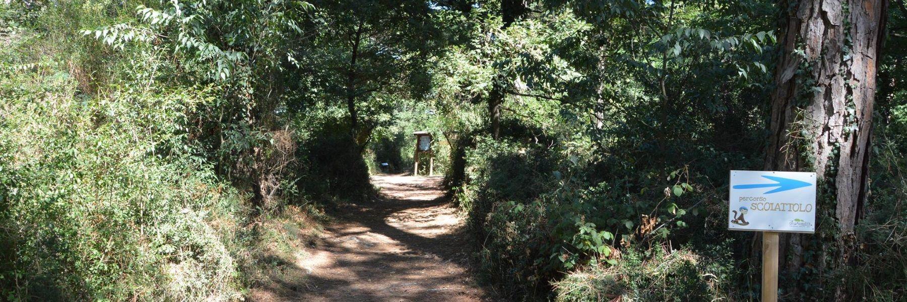 Visites guidées au Parc Naturel