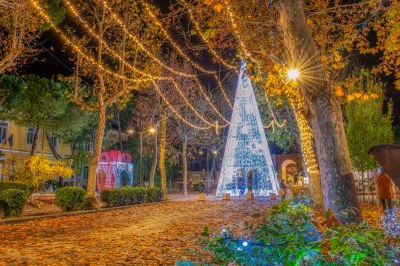 Christmas lights in Cervia, Tree and parcel Viale Roma  - Ph. Alberto Bruno Arpini
