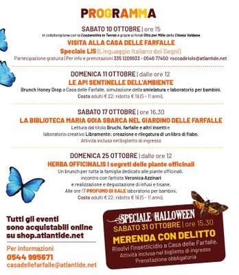 Farfalle d'autunno, programma