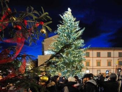 Inverno d'aMare, albero Piazza Garibaldi - Ph. foto Gianni Castellani