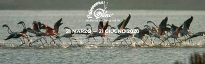 Primavera Slow, logo 2020