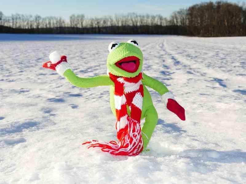 Il freddo e la neve...ti racconto una cosa, pupazzo