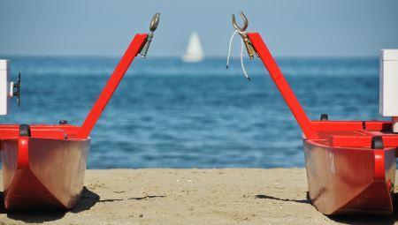 Mosconi rossi in spiaggia