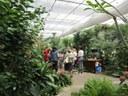 La Casa delle Farfalle & Co. , serra
