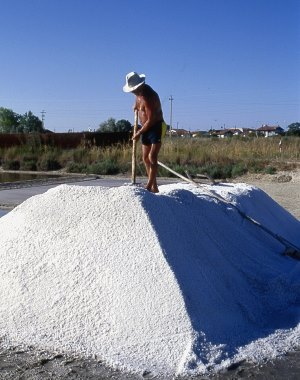 Salt worker in the Camillone Salt pan
