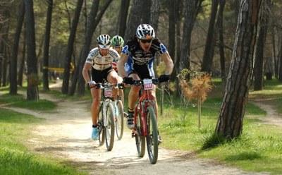 Cervia Bike Tourism
