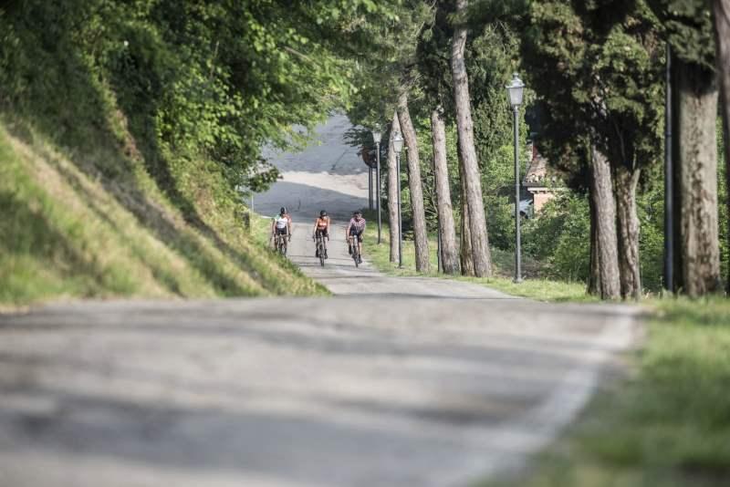 Terre del Triathlon, Bertinoro