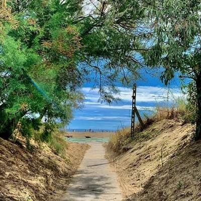 Pinarella - pineta e spiaggia - Ph. Malduka