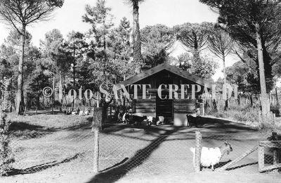 La fattoria del Parco naturale - Ph. Sante Crepaldi