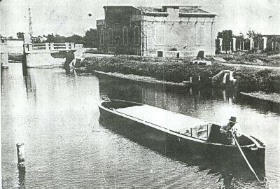 Burchiella, 1900 - Ph. Gabriele Bernabini