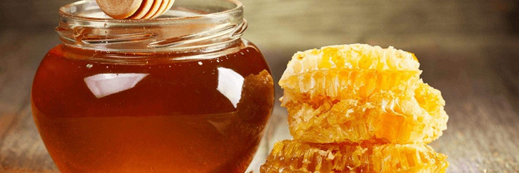 Il miele di melata