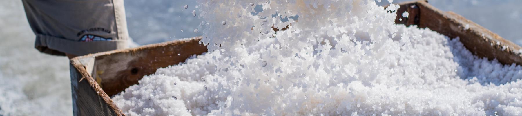 Il sale della millenaria Salina di Cervia