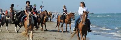 A cavallo del mare - 1800x600