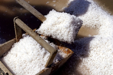Il sale dolce, panira