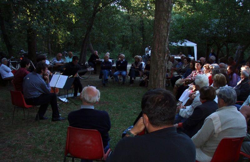 Concerti in pineta, pubblico