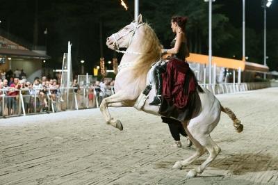 Cervia city farm - cavalli - 400