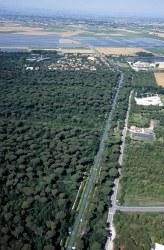 Pineta di Cervia - Milano Marittima - veduta aerea
