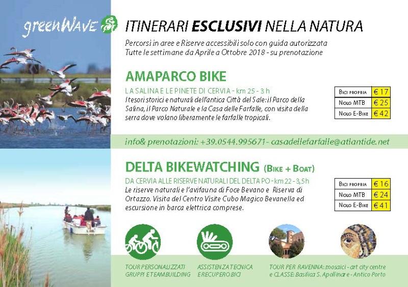 GreenWave, Flyer pag. 2