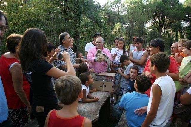 Passeggiate ecologiche in pineta - Guerrino Gori - 640