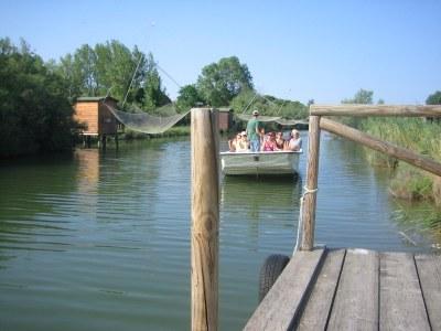 Salina in barca