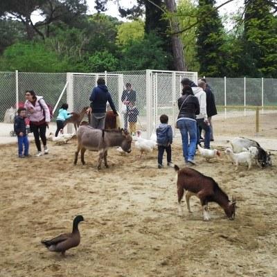 Parco Naturale di Cervia, un'oasi di verde