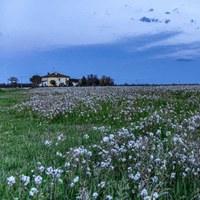 Case Rurali