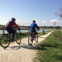 Rotta del Sale bike trail - Cervia Venezia offroad