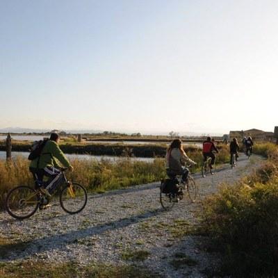 Bicicletta in salina