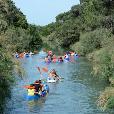 Escursione in salina in canoa