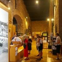 Passeggiata fra sale e storia